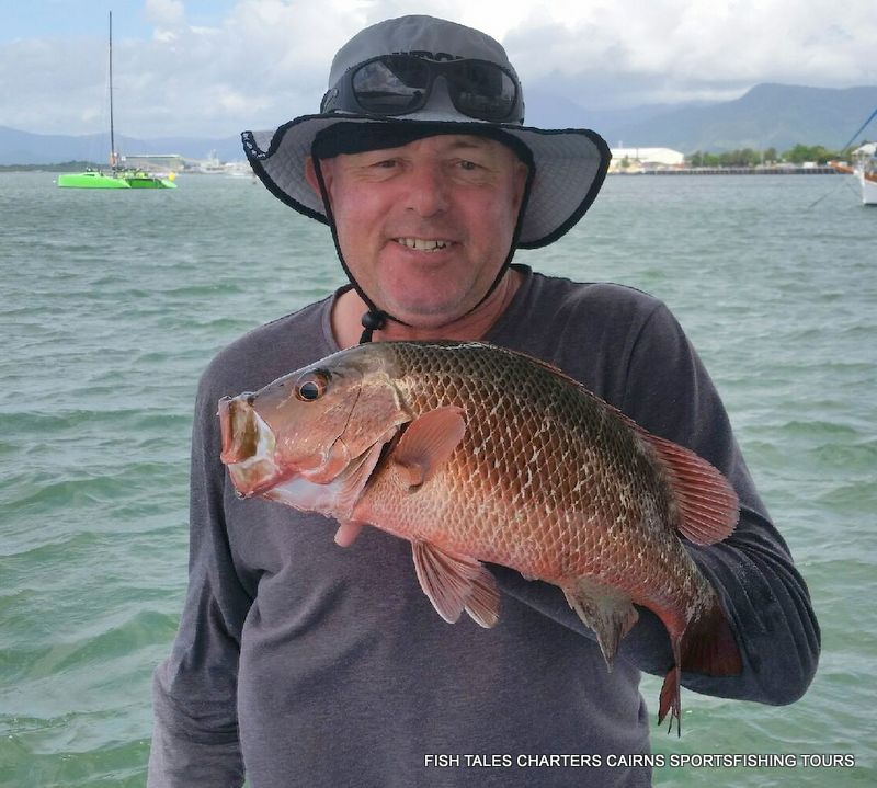 Estuary fishing for Mangrove Jack in Trinity Inlet, Cairns