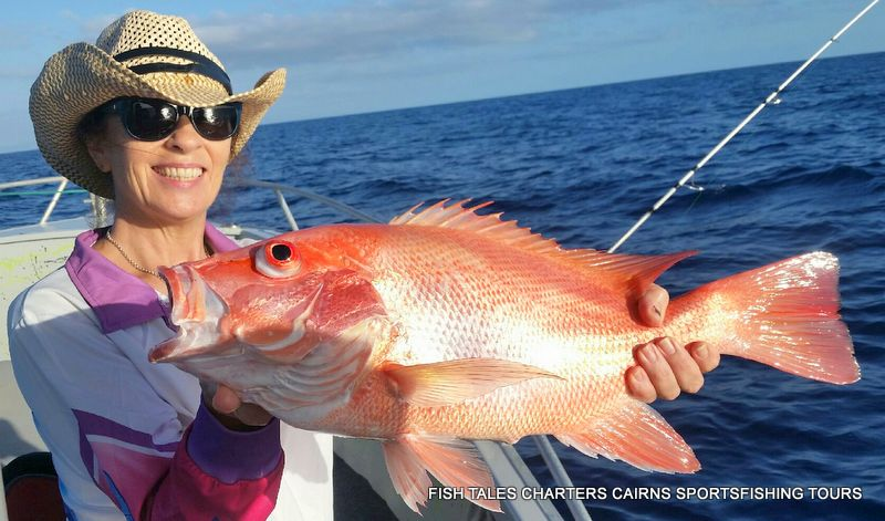 Christina from Cairns-Large Mouth Nannygai (Saddletail snapper)