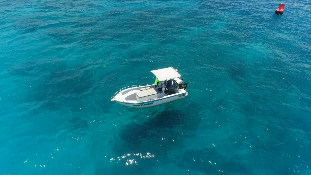 GT Popper fishing on the Great Barrier Reef from Cairns in Vessel `dont know`