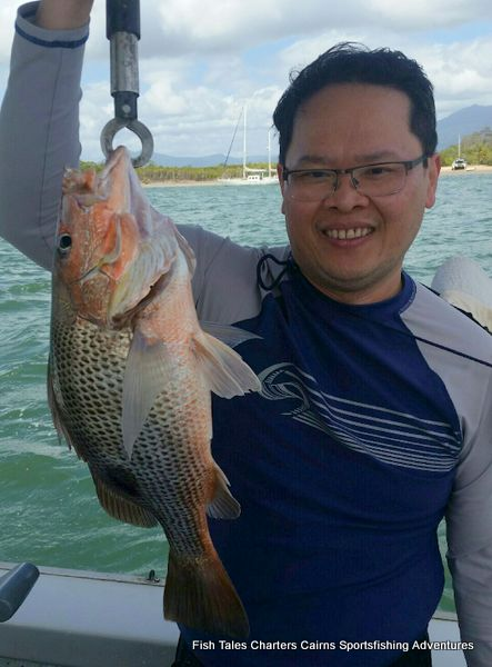 Estuary fishing charter from Cairns in Tropical North Queensland for Fingermark