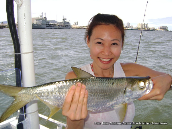 Guided estuary fishing charter from Cairns, Trinity Inlet, Queensland, Australia