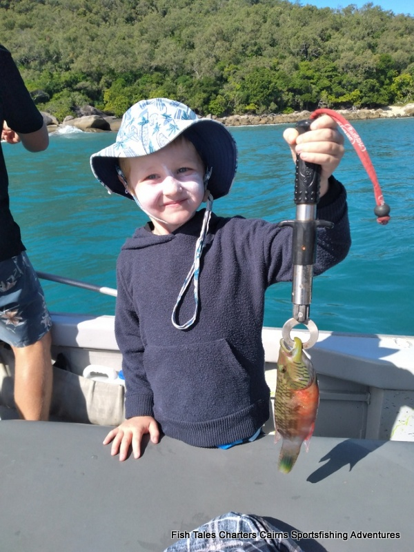 Cairns Reef Fishing for Wrasse