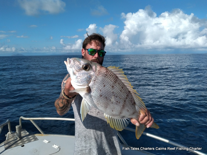 Fish Tales Charters Guided Cairns Reef fishing from Cairns to the Great Barrier Reef